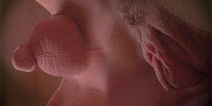 Mixage de sexes | vulve et pénis | Visuel © David Noir