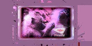 Cours Scène Vivante | Les ateliers | Visuel © David Noir
