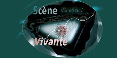 Cours Scène Vivante © David Noir
