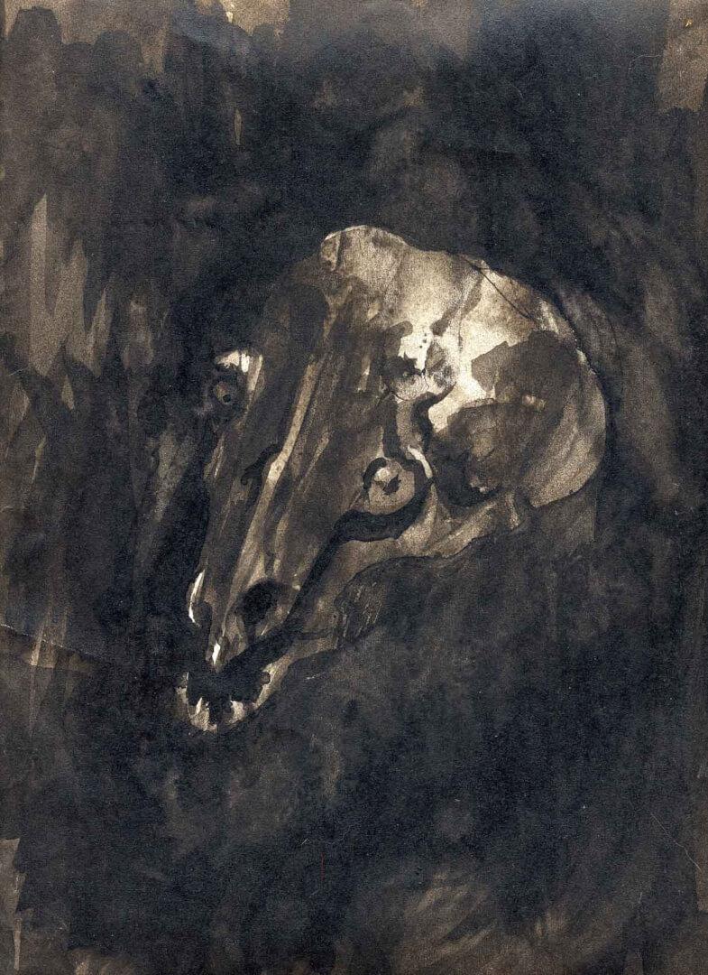Crâne de musaraigne © David Noir | Dessins, peintures, collages