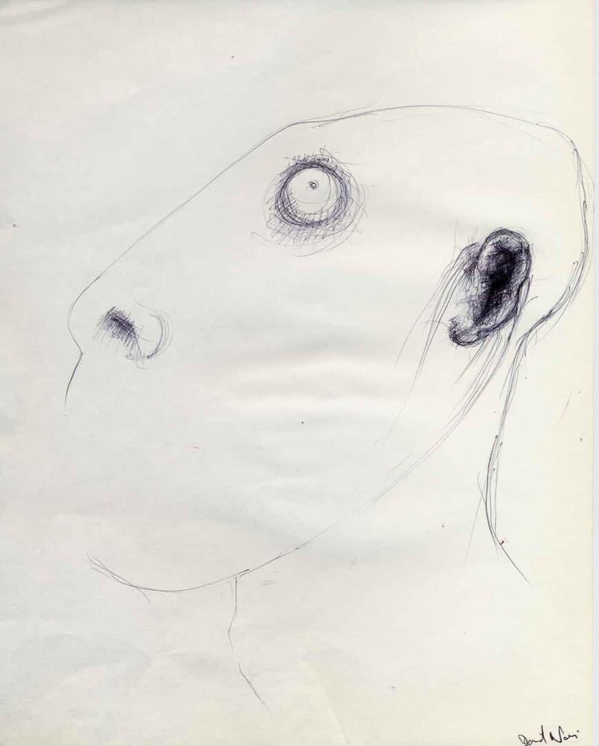 Tête d'épingle © David Noir | Dessins, peintures, collages