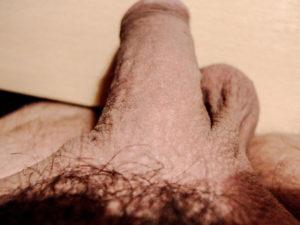 Ma verge en plongée |Ma queue branlée | Détails de mon sexe |Autoportrait |Ma bite, mon amie © David Noir