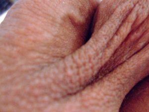 Pli de peau de mon testicule gauche|Ma queue branlée | Détails de mon sexe |Autoportrait |Ma bite, mon amie © David Noir