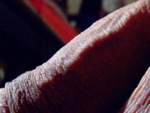 Détail de ma verge |Ma queue branlée | Détails de mon sexe |Autoportrait |Ma bite, mon amie © David Noir