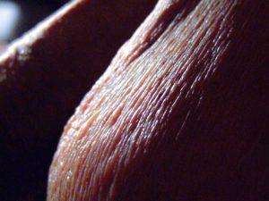 Peau de mon testicule gauche |Ma queue branlée | Détails de mon sexe |Autoportrait |Ma bite, mon amie © David Noir