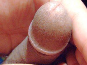 Mon gland en animal de compagnie |Ma queue branlée | Détails de mon sexe |Autoportrait |Ma bite, mon amie © David Noir