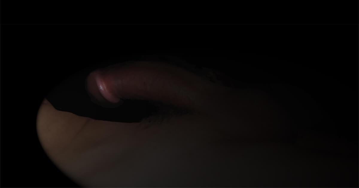 Ma bite, mon amie © David Noir
