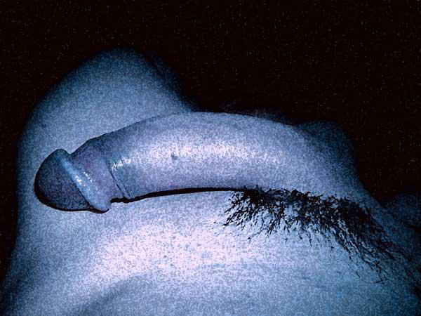 Mon art sexuel | Ma bite alanguie | 3 |Autoportrait © David Noir