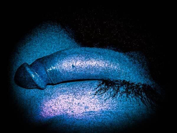Mon art sexuel | Ma bite alanguie | 4 |Autoportrait © David Noir
