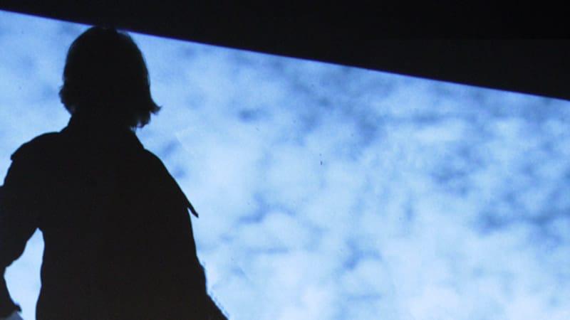 Scène Vivante   Cours particuliers   Visioconférence individuelle   Photo © David Noir