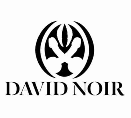 Logo DAVID NOIR |Marque semi-figurative déposée à l'INPI sous le N°4658060 |Graphisme © Filifox-Philippe Savoir | Conception © David Noir